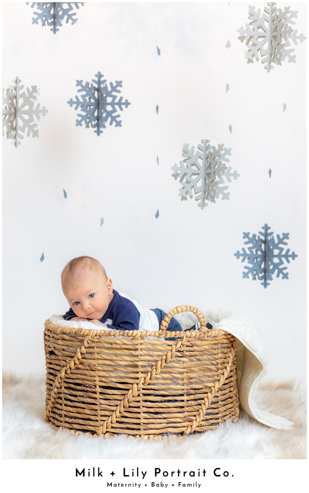 Winter Mini Sessions at Milk and Lily Portrait Co.